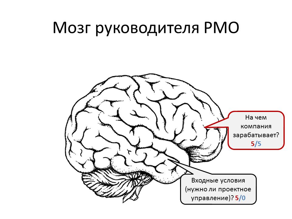 Как сделать мозг лучше работал 110